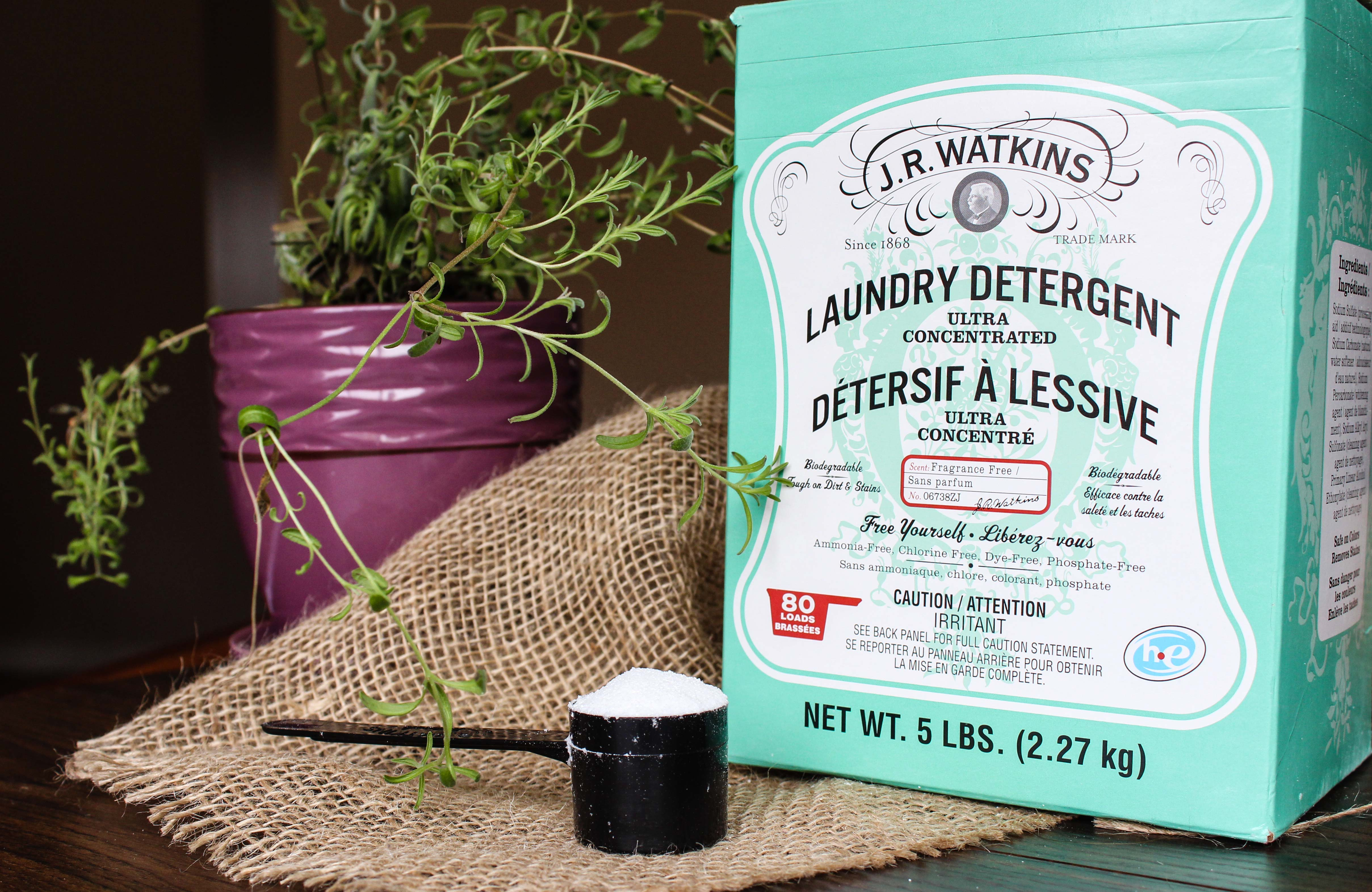 J.R Watkins Powder Laundry Detergent Review   Green Up Your Laundry